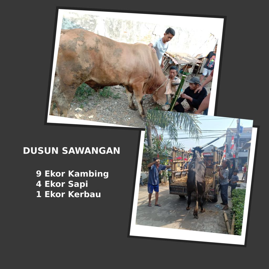 Ragam Qurban Di Desa Bulakan – Pemdes Bulakan