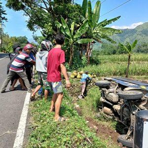 Ngantuk, Sebuah Mobil Pick Up Masuk ke Sawah di Cilukba